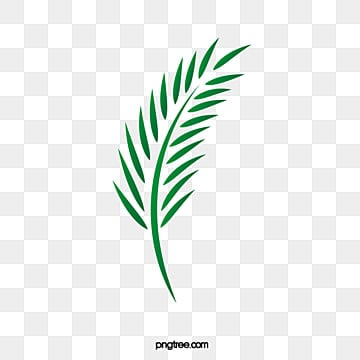 Easter palm leaves, Vector Palm Leaves, Palm Leaf Green Vector Decoration, Green Vector Palm PNG and Vector