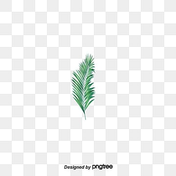 Leaf Vectors 13 382 Graphic Resources For Free Download