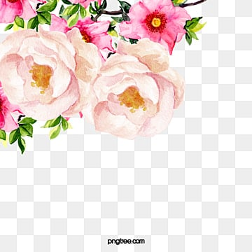 Flower Pattern Png, Vector, PSD, and Clipart With