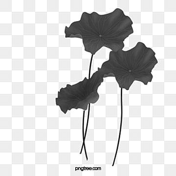 Flores Negras Png Vectores Psd E Clipart Para Descarga Gratuita
