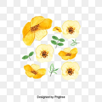 Yellow flowers png vectors psd and clipart for free download vector hand painted flowers vector hand painted watercolor png and vector mightylinksfo