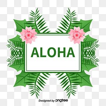 Hawai Png Vecteurs Psd Et Icones Pour Telechargement Gratuit Pngtree
