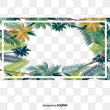 Tropical leaf decoration box, Vector Png, Leaf Frame, Tropical Plants PNG and Vector