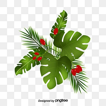 Hand painted watercolor banana leaves, Vector Png, String String Red, Tropical Plants PNG and Vector