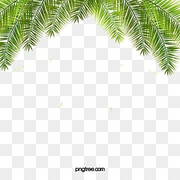 Un vecteur de contexte des palmiers, Vert, L'île De Téléchargement Sans Découpe, La PlagePNG et vecteur