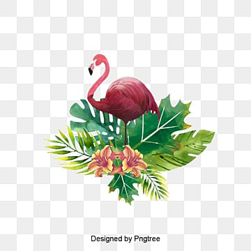 Flamant rose, Peint à La Main, Les Feuilles, Flamingo PNG Image and Clipart