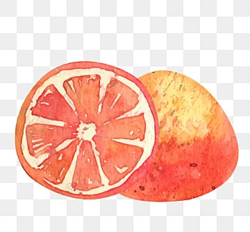 Grapefruit Slices Png, Vector, PSD, and Clipart With Transparent Background for Free ...