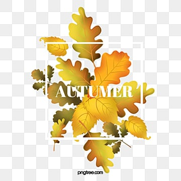Autumn leaves poster design material, Maple Leaf, Deciduous Leaves, Fall PNG and Vector