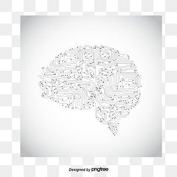 brain circuit, Brain, Human Brain, Mind PNG and Vector