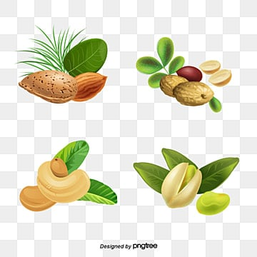32d60f36f246cbfba22f8c9207a8696a dry fruits png, vectors, psd, and clipart for free download pngtree
