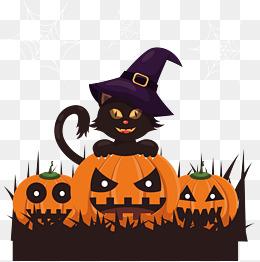 Witch Magic Black Cat