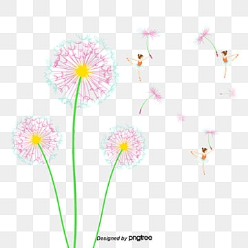 Wall Sticker PNG Images | Vector and PSD Files | Free