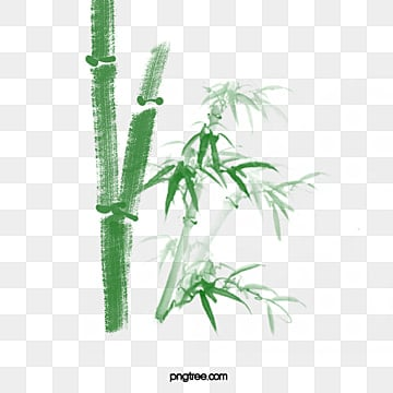 bamboo bamboo, Bamboo Clipart, Bamboo, Bamboo Leaves PNG and PSD