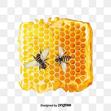 beehive png vectors psd and clipart for free download
