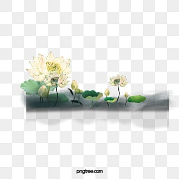lotus, Lotus Clipart, Lotus, Pond PNG and PSD