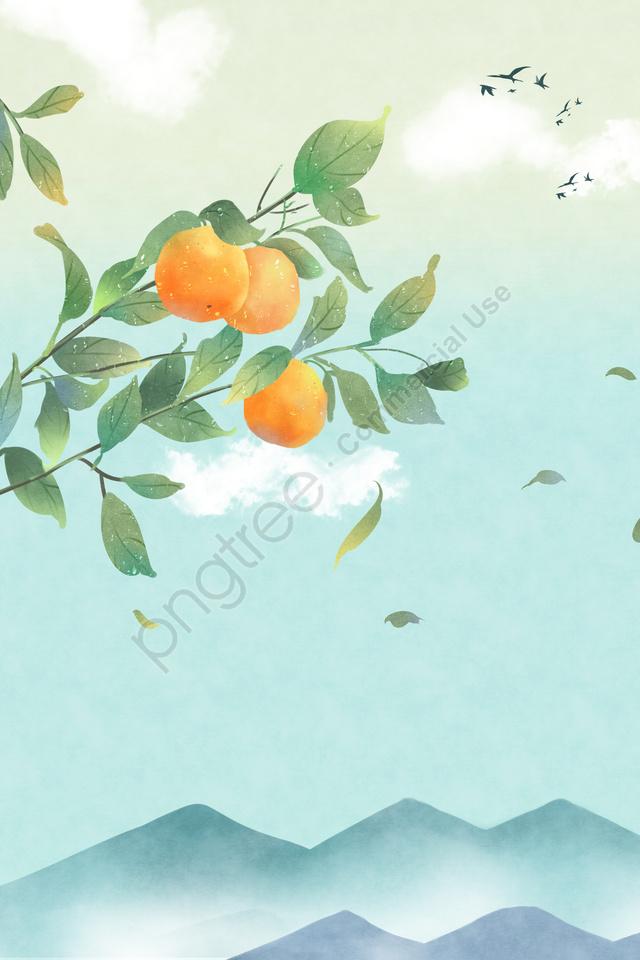 24太陽の用語太陽の用語寒い露, タンジェリン, ホンヤン, 美しい llustration image