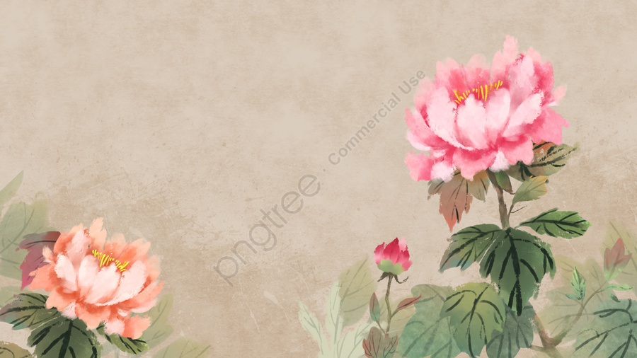 ancient flower painting chinese style antiquity classical, Elegant, Peony, Plant llustration image