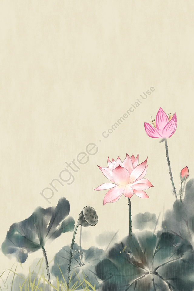 ancient flower painting flower painting antiquity chinese style, Flower, Lotus, Plant llustration image