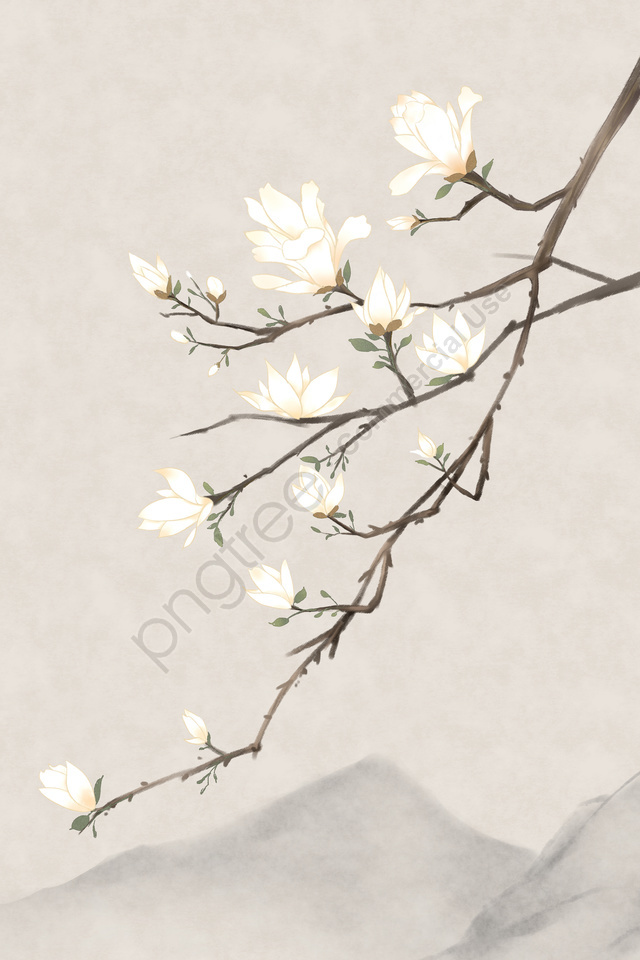 古代花卉繪畫玉蘭花古典, 古代, 中國式, 植物 llustration image