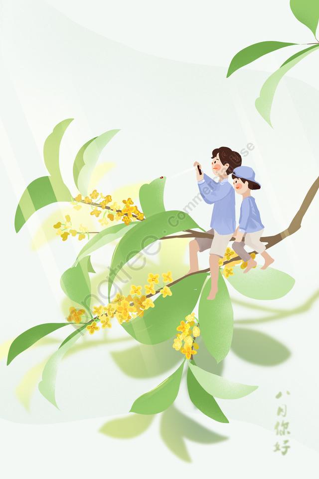 8月8月八月你好, 夏天, 桂花, 花 llustration image