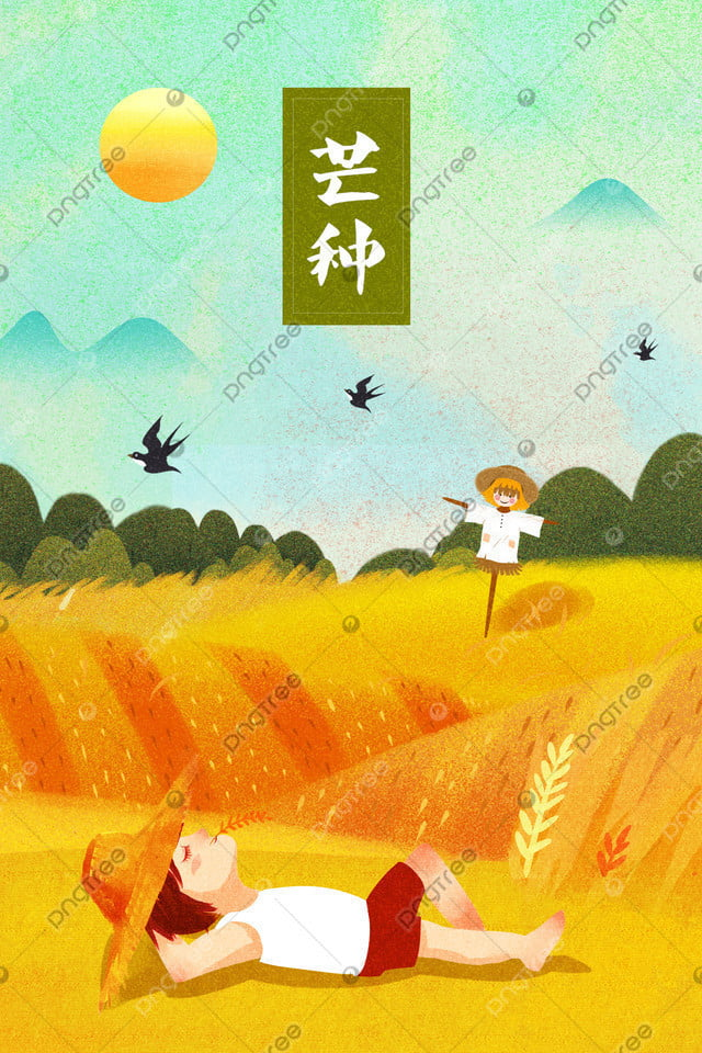 漫画イラストマンゴー種24太陽用語, 24太陽の条件, マンガ, 伝統的 llustration image