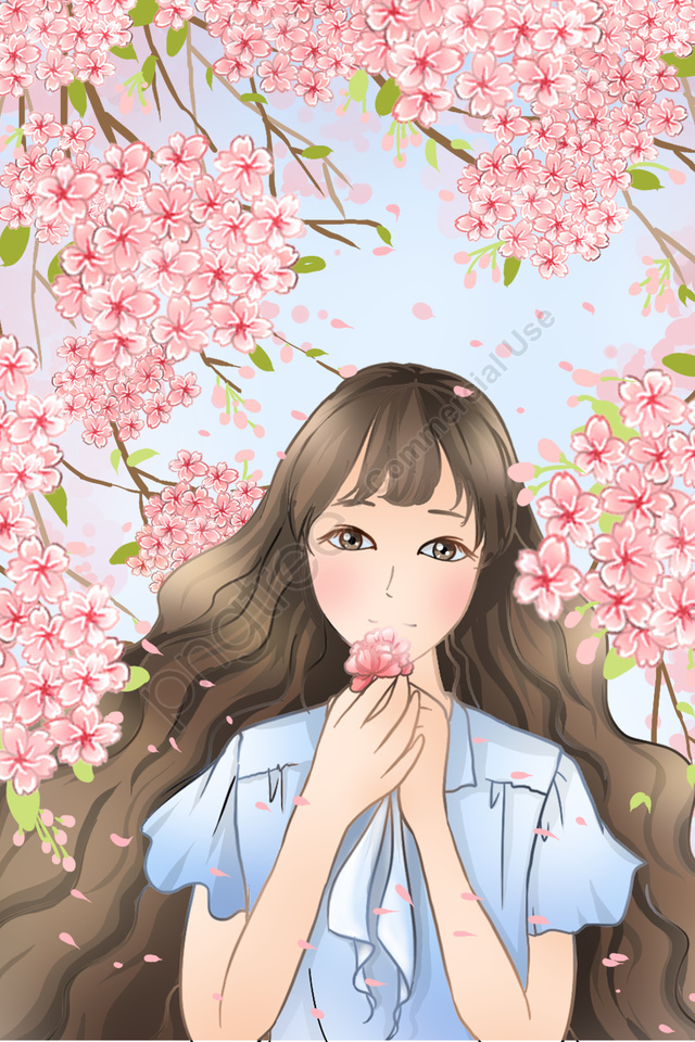 cherry blossoms spring spring equinox beauty, Pink, Flower, Illustration llustration image