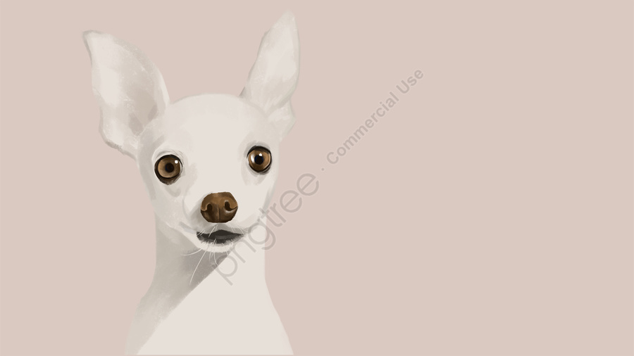 милый питомец собака прекрасный милый, свежие, мило, пэт llustration image