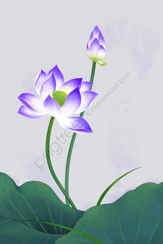 花植物蓮蓮, ロータスリーフ, 細心の, インク llustration image