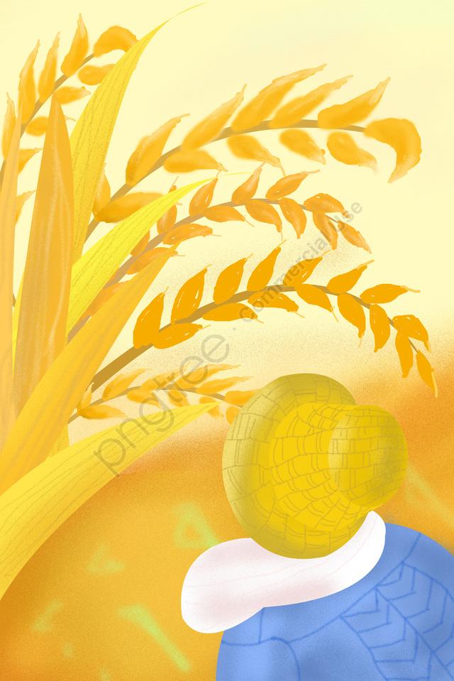 ゴールデン背景報酬小麦農家, フィールド, ランド, マンゴー種 llustration image