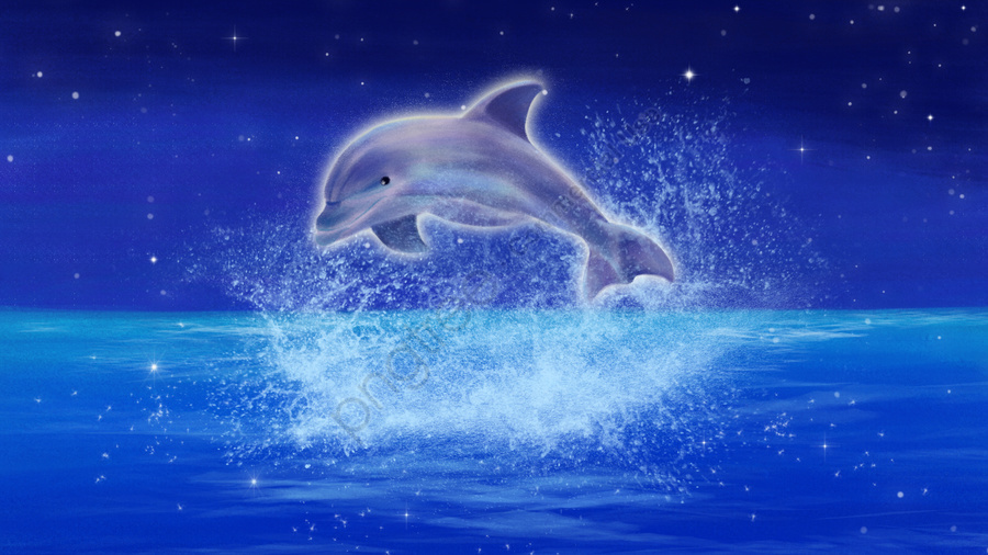 رسمت باليد التوضيح الدلفين المحيط, الليل, ستار, السماء llustration image