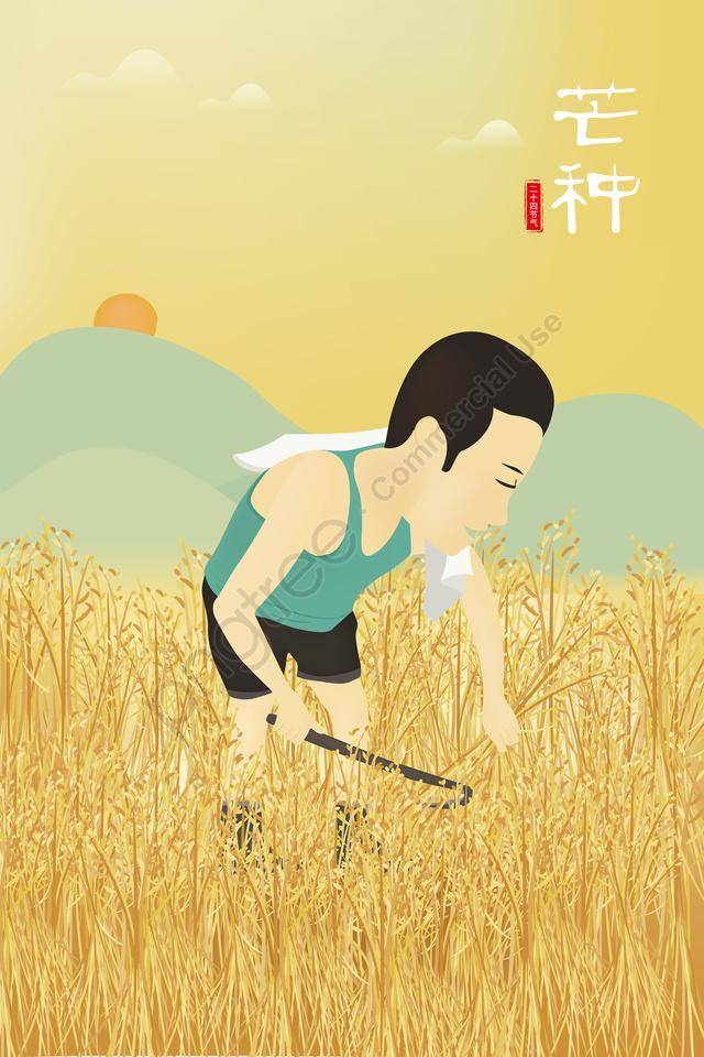 収穫マングイラスト農家切削米ゴールデン, 小麦, 小麦耳, 水田 llustration image