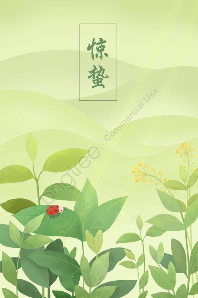 ホラーソーラー用語グリーン植物てんとう虫, 恐怖, 太陽の項, グリーンプラント llustration image