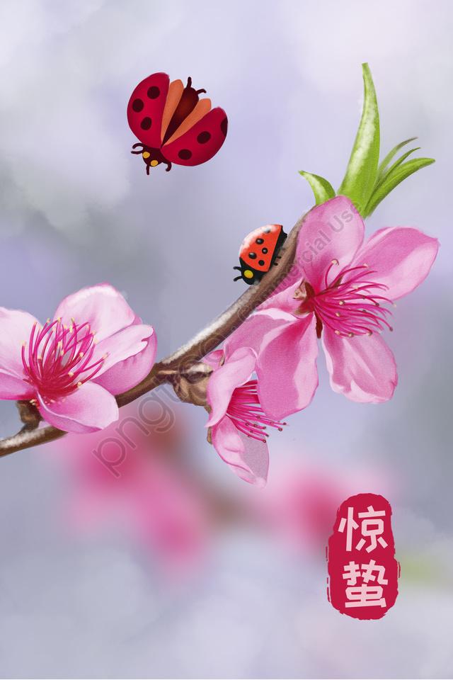 ホラーソーラー用語スノーピーチブロッサム, てんとう虫, 美しい, 太陽系 llustration image