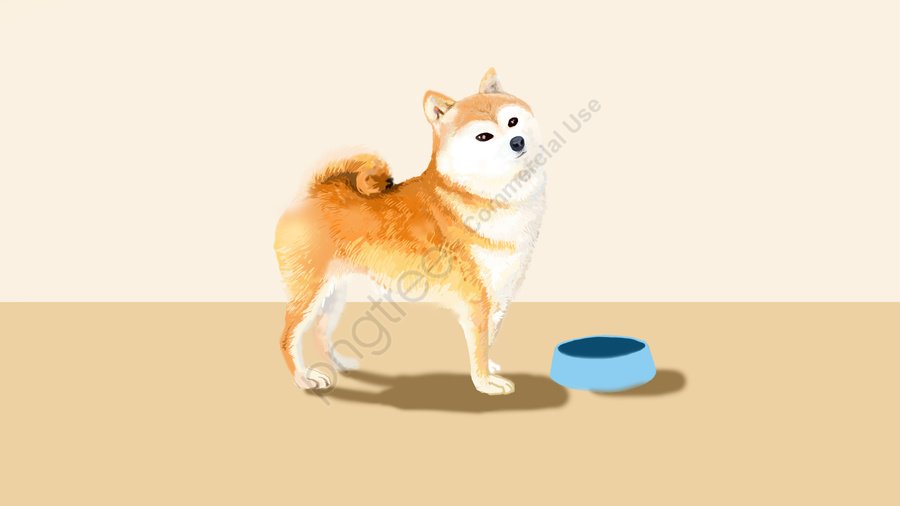 lovely cute pet puppy shiba inu, Hand Drawn Style, Realistic, Lovely llustration image
