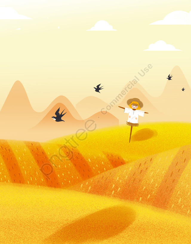 マンゴー種オレンジ水田物語, 広告, オレンジ色の背景, オレンジ llustration image