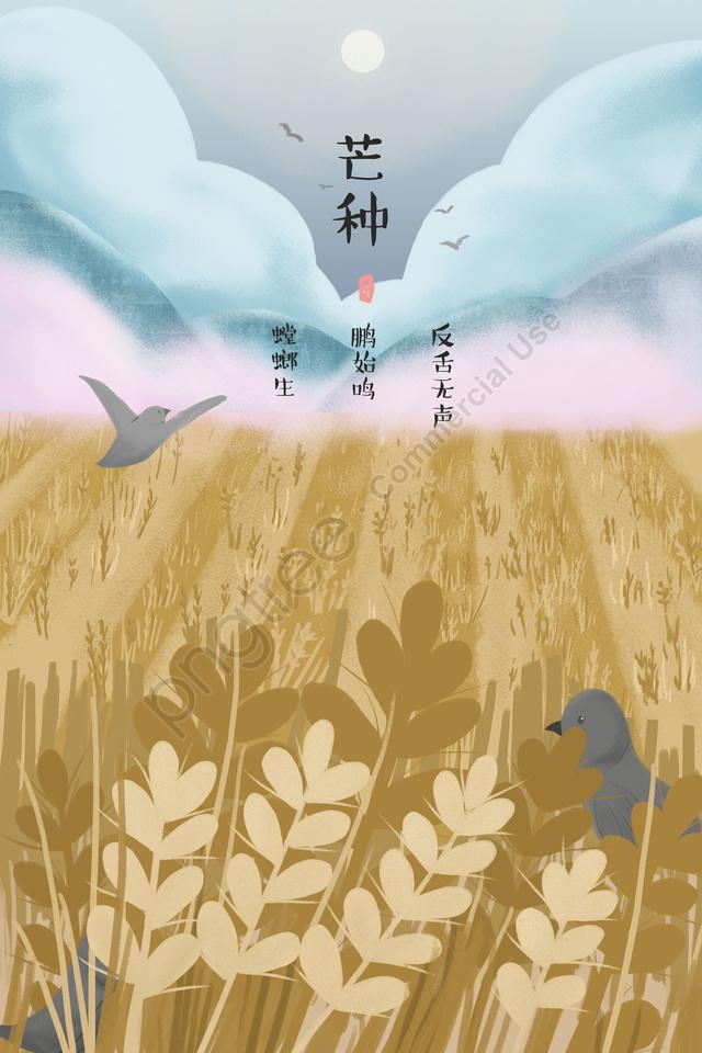 マンゴー種ソーラー用語24ソーラー用語ゴールド, 麦畑, フィールド, イエロー llustration image