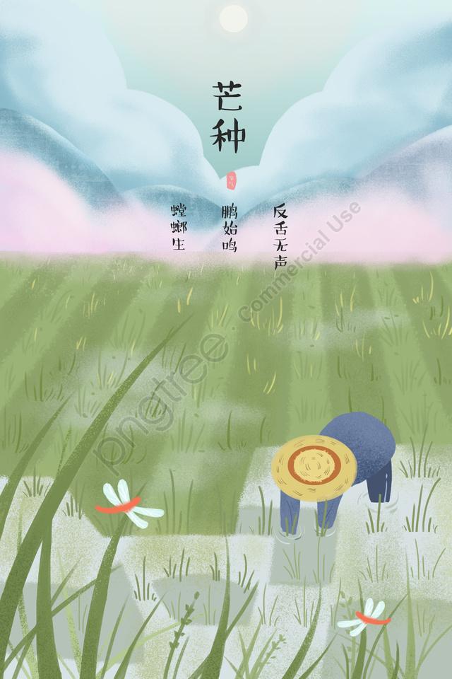 マンゴー種24ソーラー用語が農家を挿入, フィールド, トンボ, グリーン llustration image