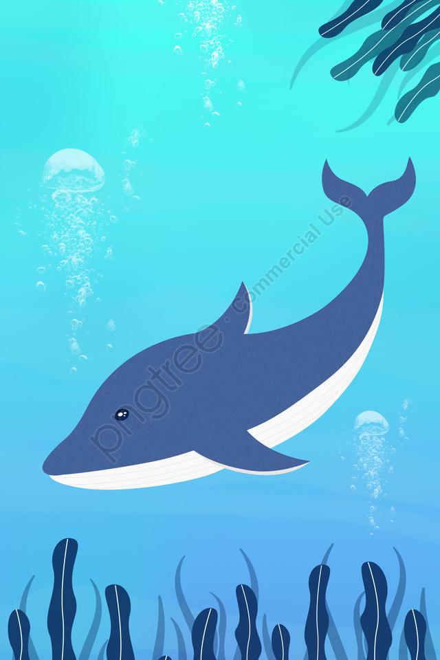 marine life whale whale national protected animal, Wild Animals, Marine Wildlife, Illustration llustration image