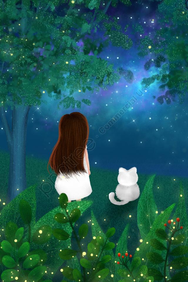 Midsummer रात हाथ चित्रित चित्रण आकाश, रात, वन, चरागाह llustration image