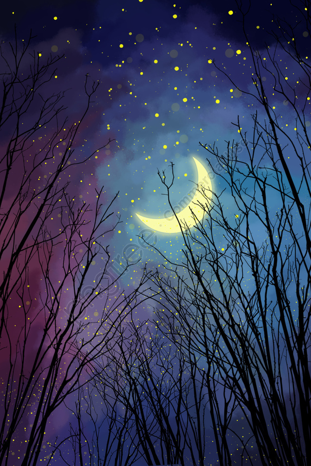 night forest moon starry sky, Nhánh, Bầu, Sao llustration image