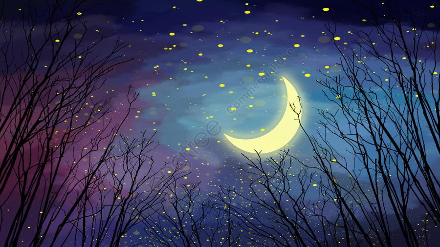 Noite Floresta Céu Estrelado Lua, Linda, Céu Da Noite, Silhueta llustration image