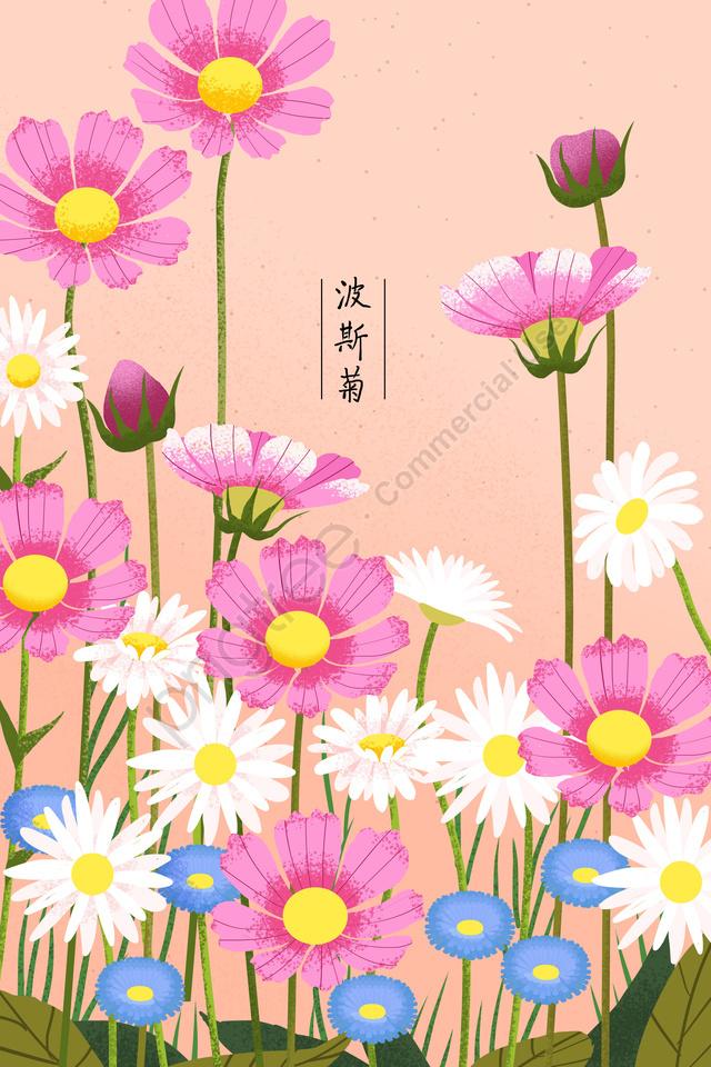 植物の花花の花, フラワー, コスモス, デイジー llustration image