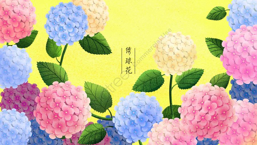 植物の花花の花, フラワー, アジサイ, 葉 llustration image