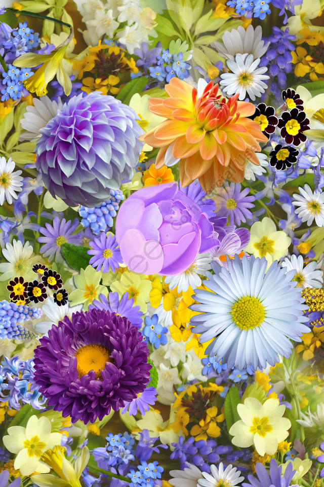 realistic colorful flowers flower, Colorful, Gorgeous, Petal llustration image