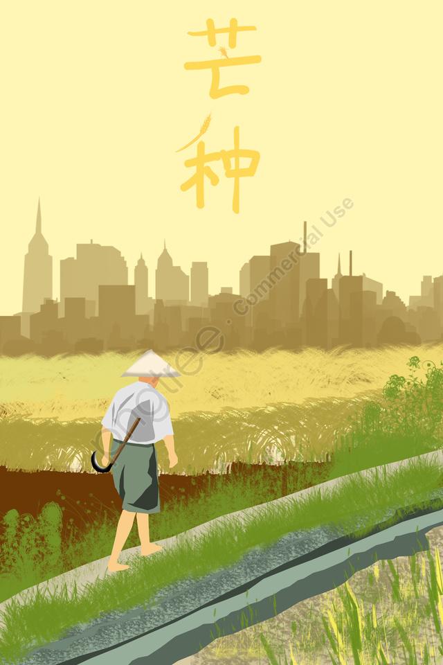 太陽光条件マンゴー種シーズン水田, イラスト, 農家, 景観 llustration image