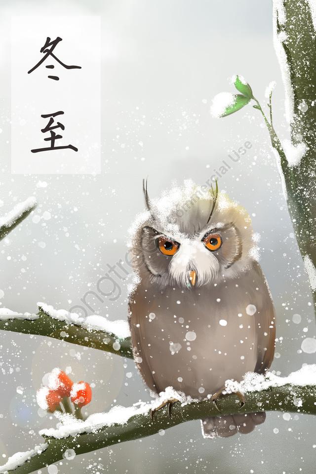 Inverno Solstício Coruja Inverno Animal, Pet, No Início Do Inverno, O Inverno llustration image