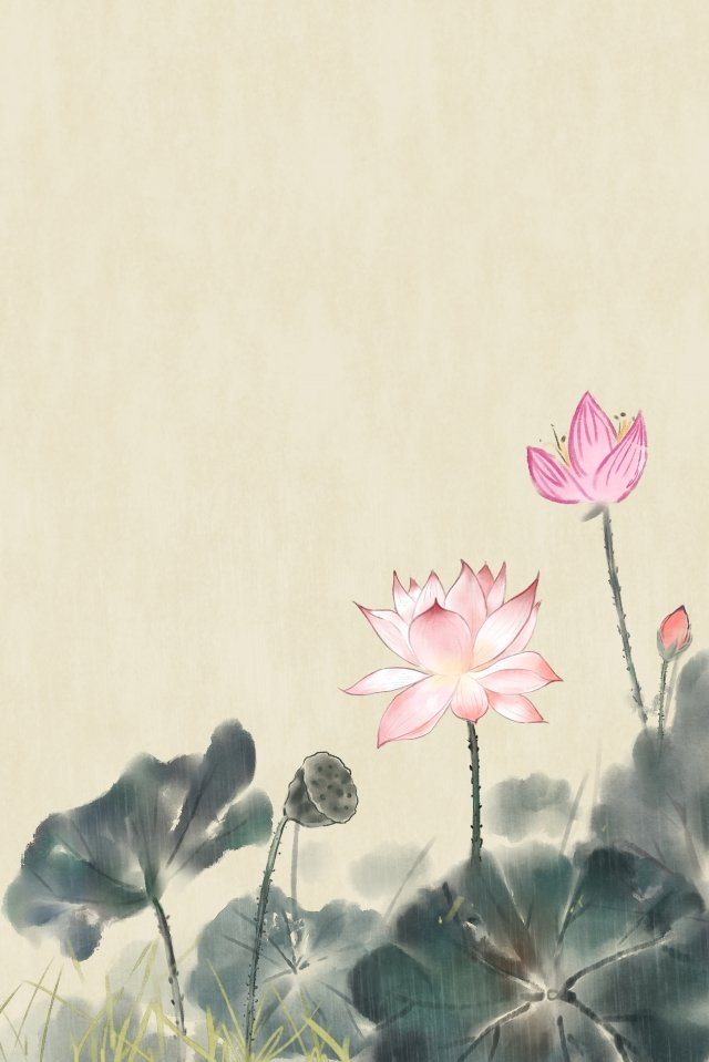 ancient flower painting flower painting antiquity chinese style, Flower, Lotus, Plant illustration image