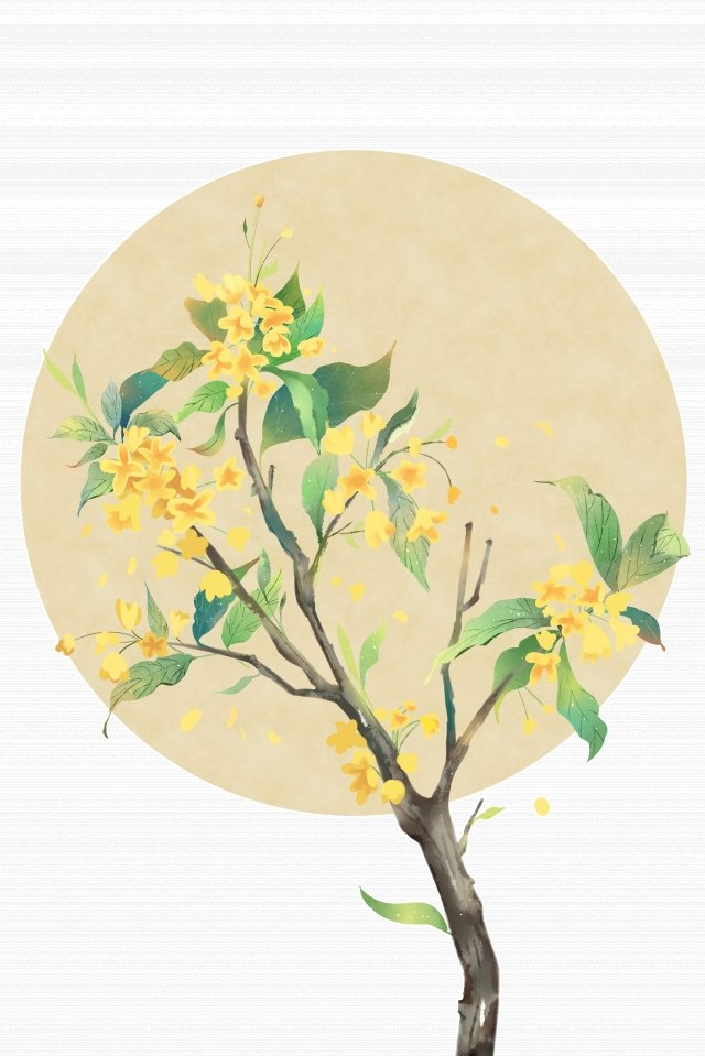ancient flower painting watercolor bloom classical, Elegant, Osmanthus, Antiquity illustration image