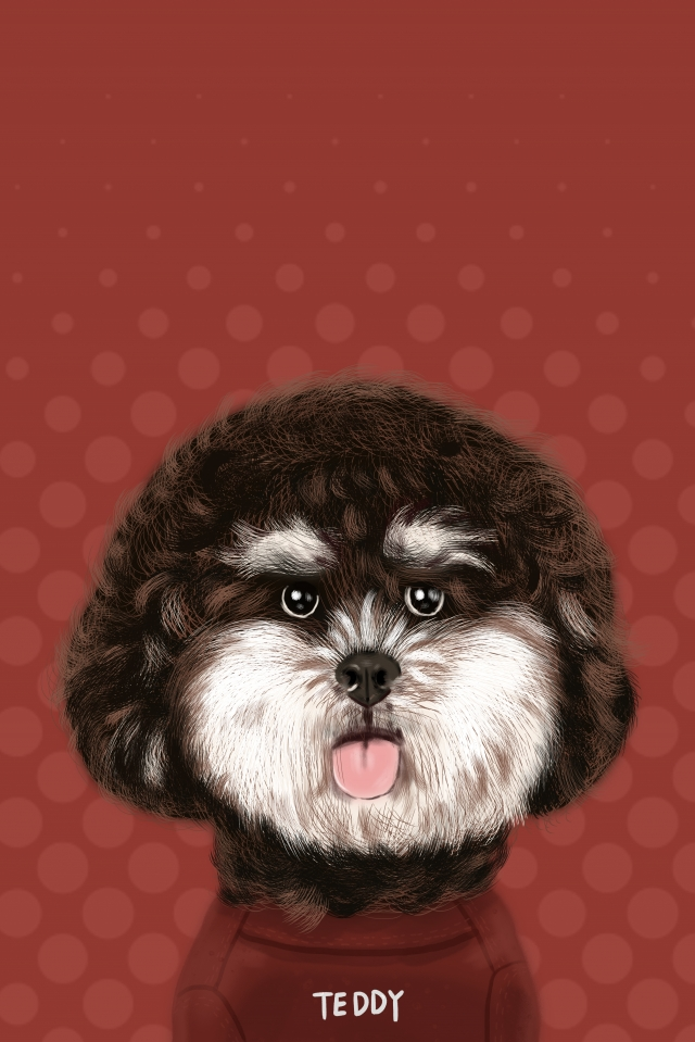 animal cute pet dog teddy, Dog, Hand Painted, Illustration illustration image