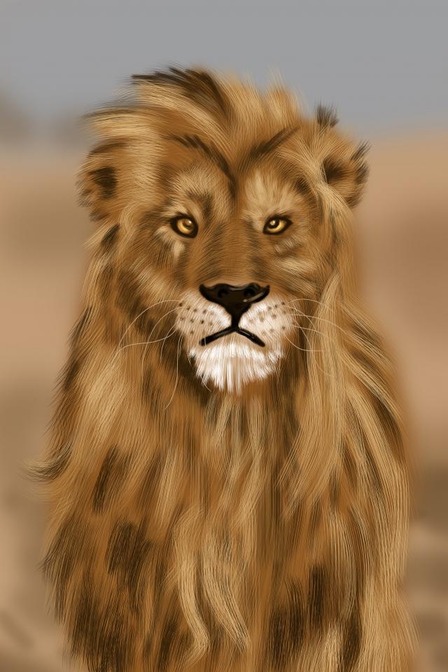 leão animal feroz da besta Material de ilustração